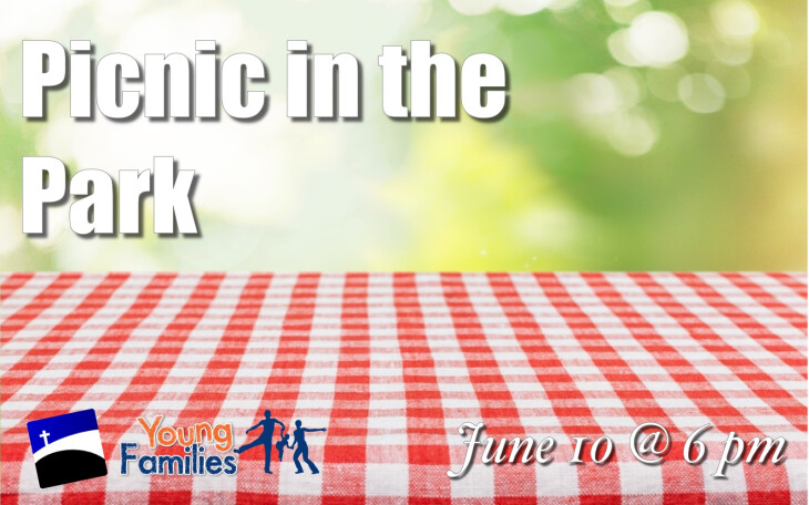 cyf picnic in the park