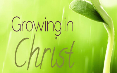 Growing in Christ: One-on-One Bible Study
